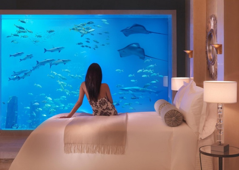 The Poseidon Underwater Resort, Fiji tourism destinations
